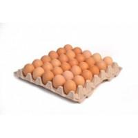 OVUS Čerstvá vejce, velikost M, 30ks - klecová