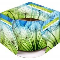 Bispol svíčka dandelions (sn71s-21) 100g