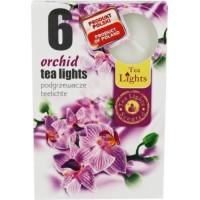 Tea Lights Svíčky Orchid 6ks